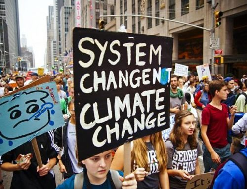 Eco-Emotions: perspectives from young climate leaders